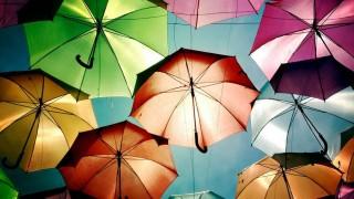 Sobre anzóis e guardas chuvas